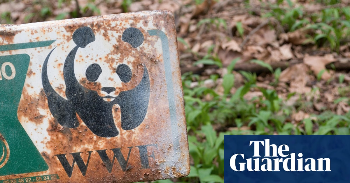 Report clears WWF of complicity in violent abuses by conservation rangers